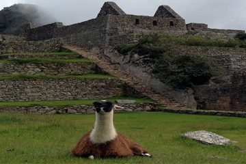 Machu Picchu Family Adventure 8D/7N